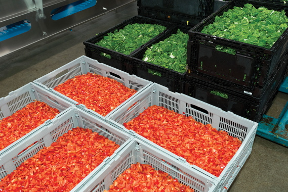 Veg Pro's value-added processing facility in Sherrington makes extensive use of reusable plastic totes and cases to transfer bulk produce through all the key processing stages.