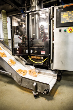 Bagged and sealed portions of breaded chicken strips emerge from a Barry-Wehmiller Hayssen vertical bagging machine, controlled via an Allen-Bradley PanelView touchscreen terminal, onto an incline bucket elevator for swift transfer to the boxing stage.