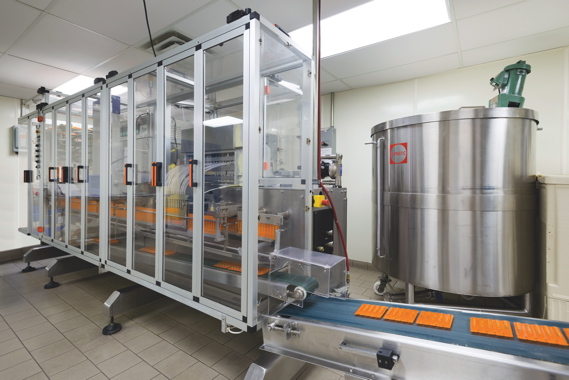A high-speed, fully-automatic form/fill/seal machine used to produce the popular double-sachet packs (see image below) widely used for sample packs and promotional giveaways.
