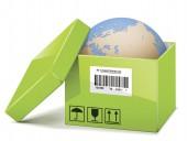 Vector Globe in Green Box