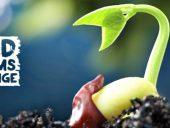 plantgrowingfoodsystemschallenge2016