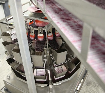 A food-grade conveyor transfers the bulk loose wild blueberries into the multihead, fully-automatic Ishida weighscales at the Saint-Bruno facility.