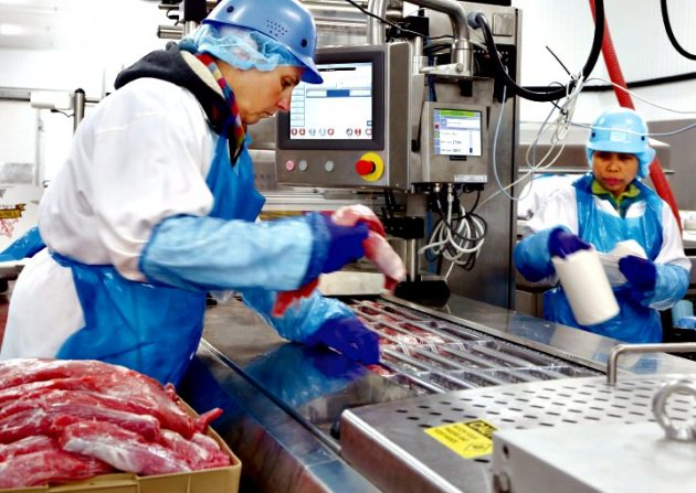 Workers at The Elite meat Company's 28,000-square-foot Ajax facility hand-load select cuts of pork tenderloin onto the bottom film of the company's iSeries thermoform machine purchased via the Canadian arm of Swiss manufacturer VC999.
