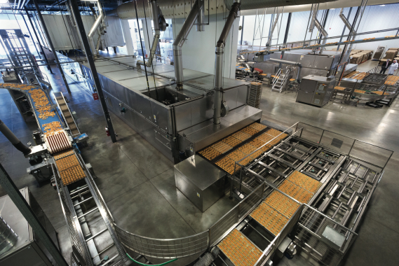 An overview of the La Petite Bretone production, showing baked treats exiting a Mondial Forni oven (center) to a 900-meter long conveyor line for cooling.