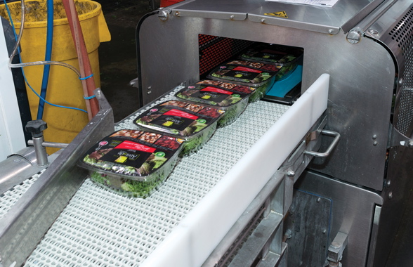 Freshly-filled and fully-sealed bowls of Asian Stir Fry kits emerge from the Multivac T800 model automatic tray-sealing machine onto the food-grade plastic conveyor belting to begin making their way towards the banding and secondary packaging stages.