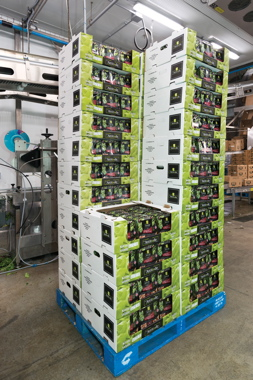 A partially completed load of Norampac corrugated cases filled with bowls of Fresh Attitude Asian Stir Fry kits sits on top of the signature-blue CHEP wooden pallet supplied to the Sherrington processing facility by the leading pallet pool operator CHEP Canada, Inc.