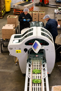 Bercy Foods uses a Fabbri Model 55 Plus stretch wrapping machine from Reiser Canada to apply a clear film cover over its tray-packed fresh fruit and vegetable products at its state-of-the-art production facility in north-end Montreal.