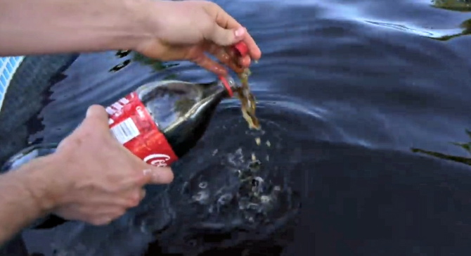 Swimming Pool Packaging : Gallon pool of coke and pepsi canadian packaging